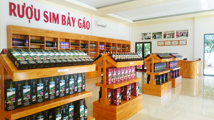 Tomentose rose myrtle alcohol sold in Phu Quoc