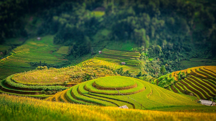 The natural scenery in Sapa