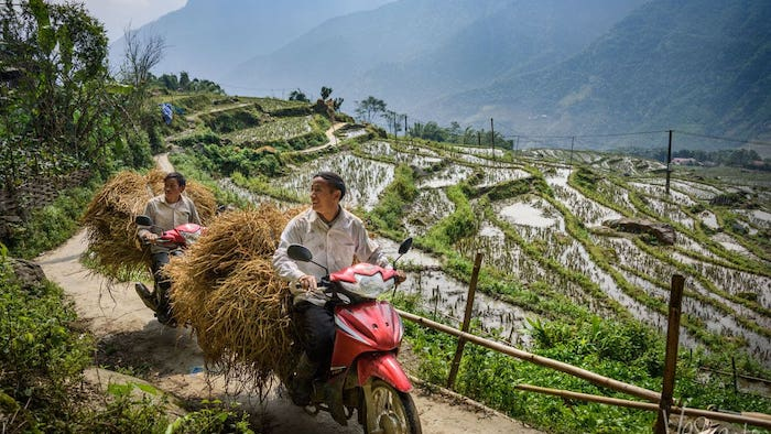 The rustic life in Sapa
