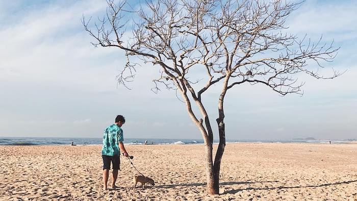The wild scenery of Suoi O beach