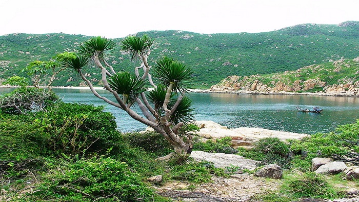Interesting experiences you should try at Nui Chua National Park