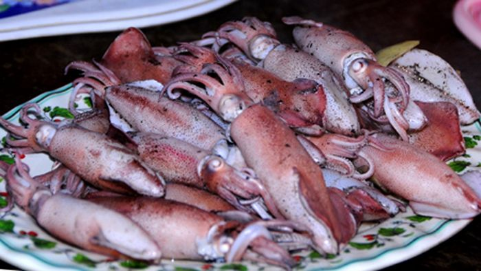 The most exciting squid fishing tours in Vietnam